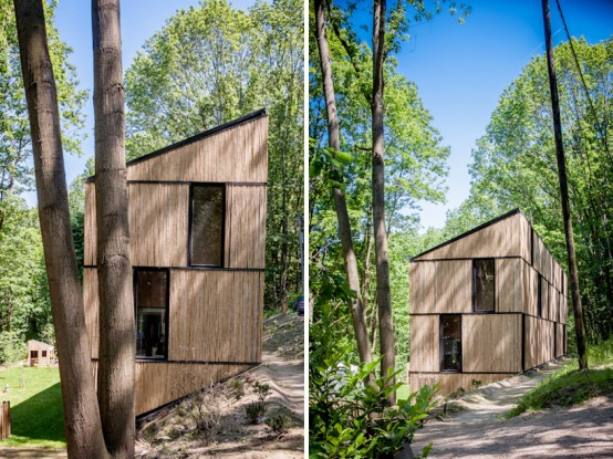 Bamboo Clad House With Energy Efficient Solutions