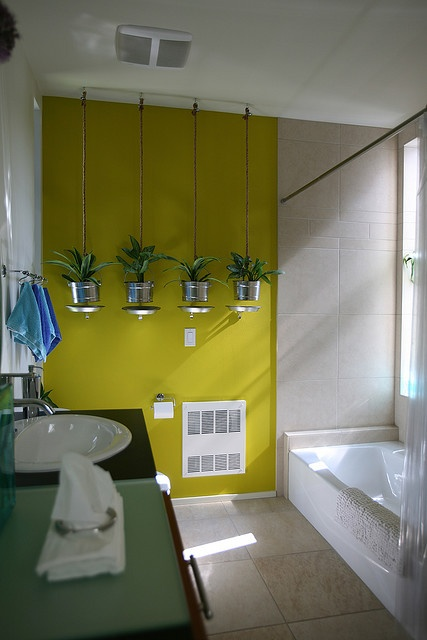 a contemporary bathroom with a neon mustard wall and some suspended bucket planters with succulents that make a statement in the space