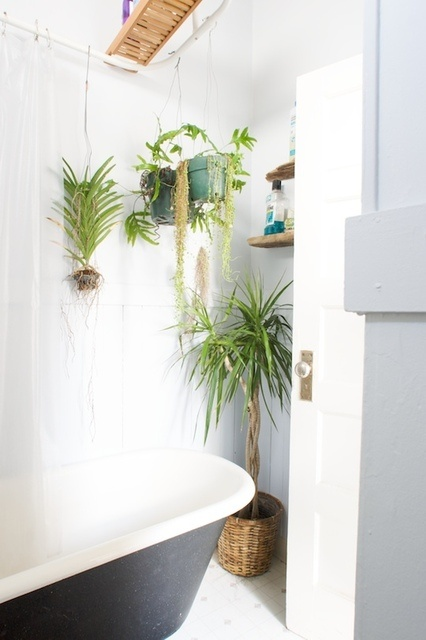 Bathroom Decor With Plants : Bathroom design ideas with plants and flowers ideal