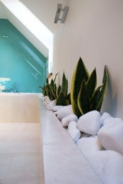 succulents planted along the wall and covered with white pebbles for a chic look make the bathroom a real spa
