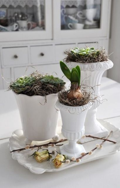 Beautiful Greenery Home Decor Ideas