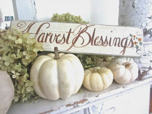 white pumpkins, a sign and green hydrangeas are amazing for elegant farmhouse Thanksgiving decor