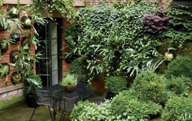a small townhouse garden with potted and planted greenery, a wall mounted garden plus a metal and glass dining set