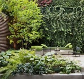 a contemporary townhouse garden with stone and concrete, potted greenery and living walls plus a tree