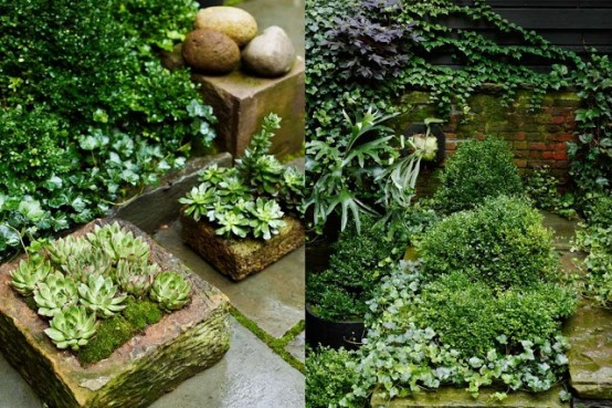 lush planted greenery and succulents in flower boxes and pots for a courtyard garden