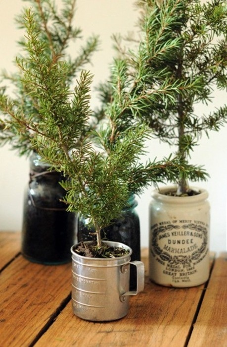 Small fir twigs looks gorgeous in vintage buckets and jugs even without ornaments.