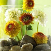best thanksgiving centerpieces 1 174x174 50 Cool Fall Flowers Décor Ideas For Your Home photo