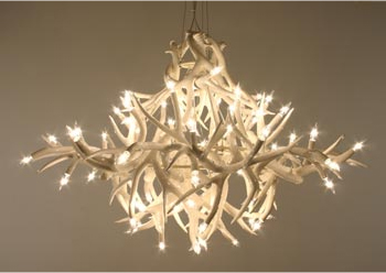 The biggest antler chandelier by jason miller digsdigs the biggest antler chandelier aloadofball Choice Image