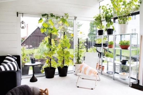 Black And White Orangery To Enjoy The Nature