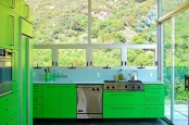 a bright green kitchen with bold cabinetry and stainless steel appliances makes a statement with its color