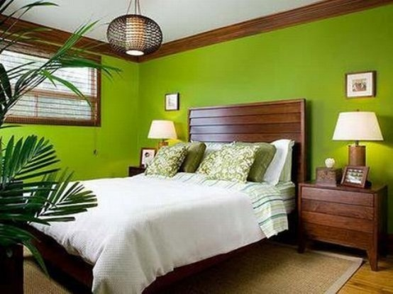 dark stained wooden furniture, bright green walls, potted plants and a wicker pendant lamp