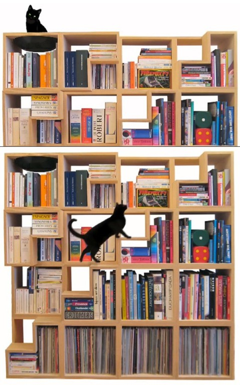 A Bookcase For You And Your Cat