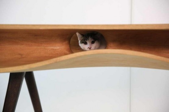 Catable A Modern Desk For You And Your Cat