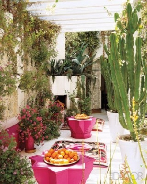 a modern Moroccan patio with hot pink furniture, potted greenery, blooms and rugs