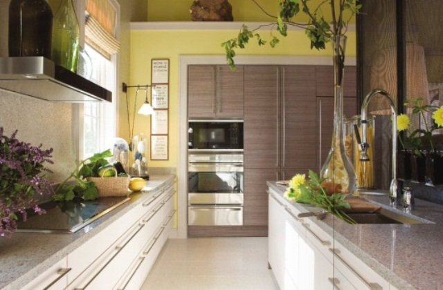 a modern ktichen with yellow walls, neutral cabinets, grey stone countertops and touches of real greenery for a fresh look