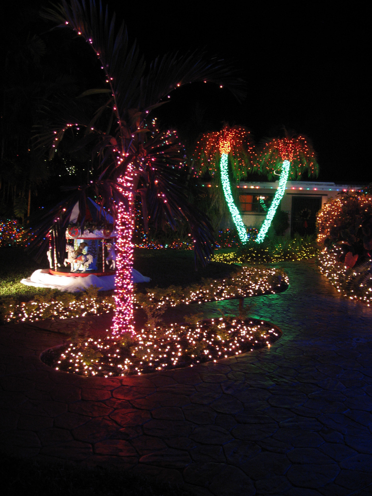 Christmas Lights Florida