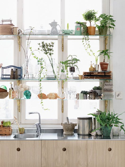 potted greenery adds a fresh and relaxed boho feel to the kitchen