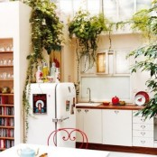 touches of red and potted greenery are great to make the kitchen more boho