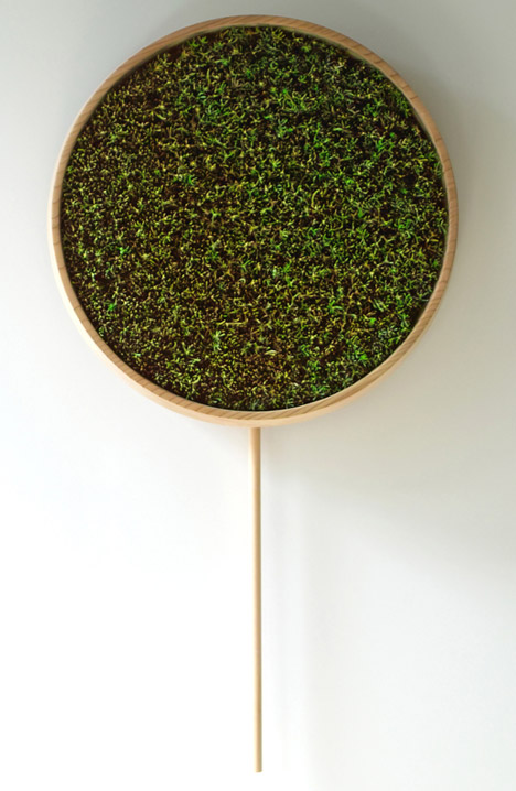 Coniferous Clock Inspired By Japanese Traditions