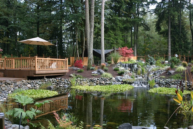 53 cool backyard pond design ideas digsdigs for Large pond ideas