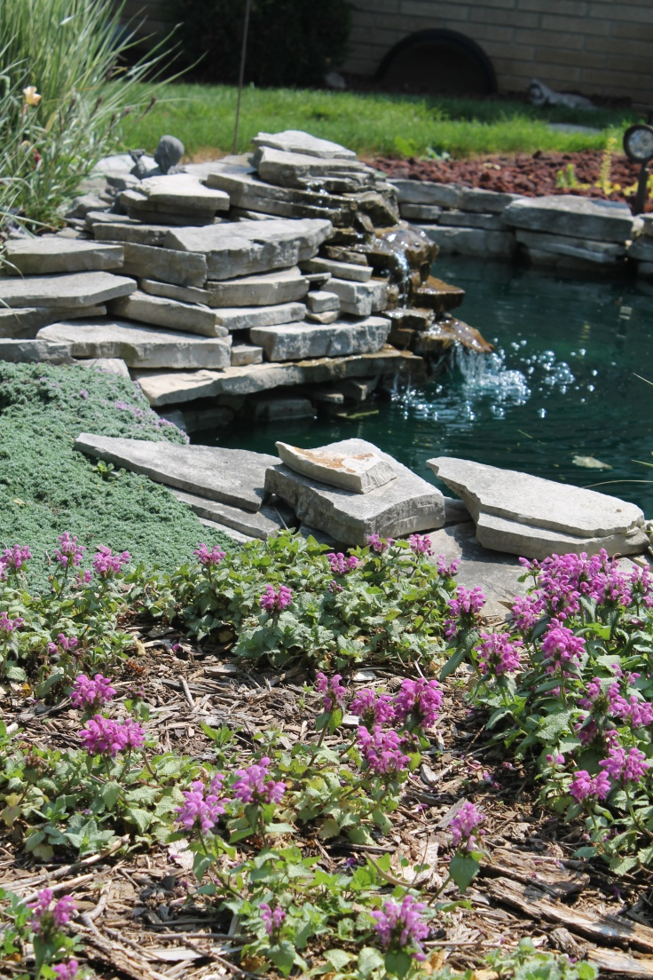 53 Cool Backyard Pond Design Ideas | DigsDigs on Cool Backyard Designs id=64923