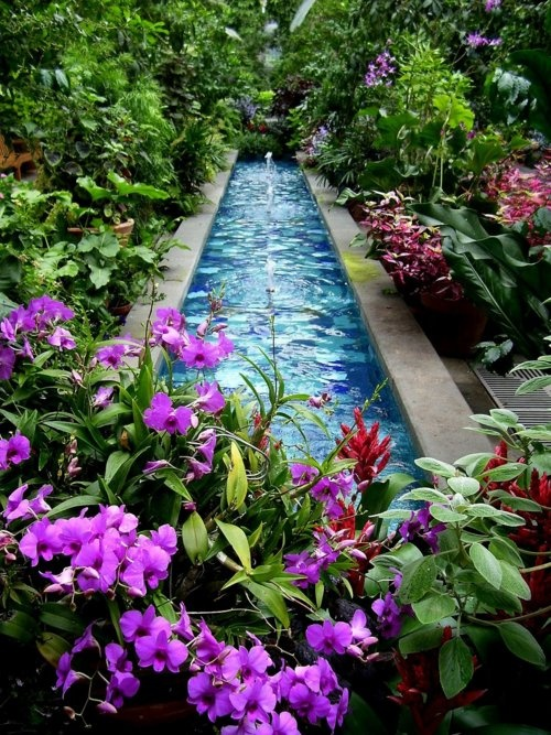 As you can go with natural pond borders, you can go with more man-made looking walls to make it look more contemporary.