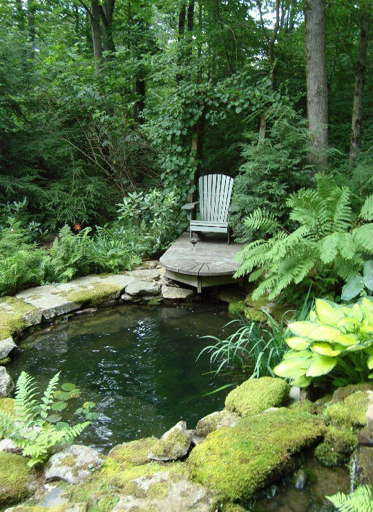 A cozy chair is the most simple solution to admire your pond surrounded by trees and other plants.
