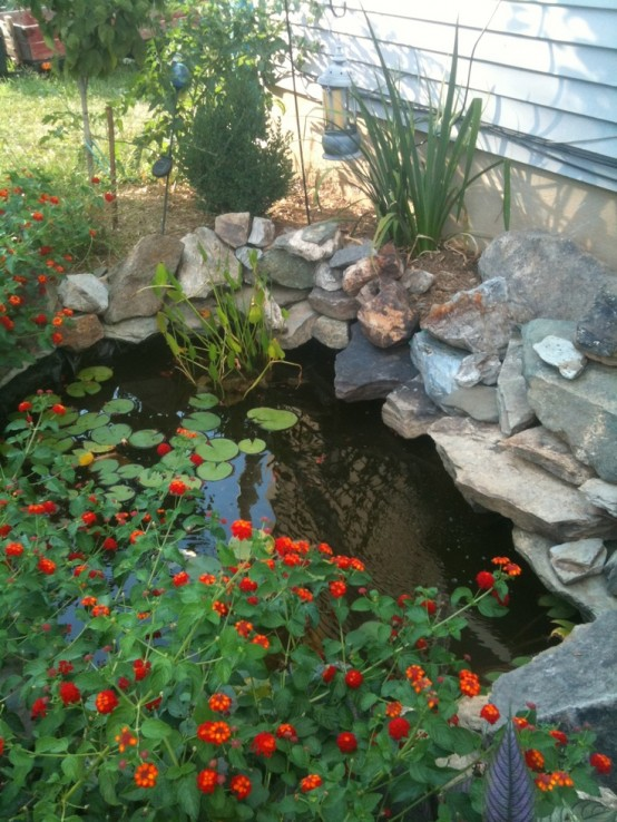 Even a tiny pond could add an interesting touch to your backyard.