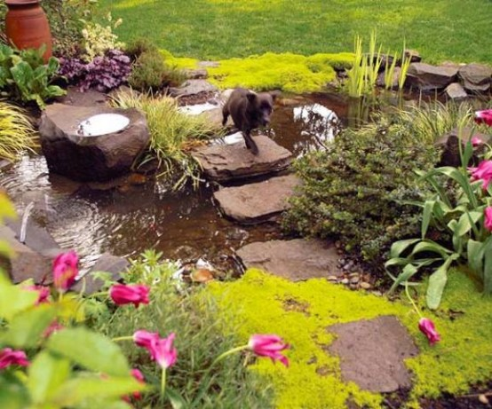 67 cool backyard pond design ideas digsdigs for Garden pond stones