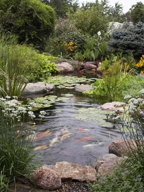 67 cool backyard pond design ideas digsdigs for Natural koi pond