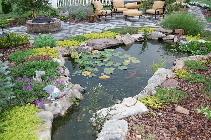 Backyard ponds on pinterest koi ponds ponds and garden for Koi pond plant ideas
