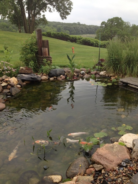 67 cool backyard pond design ideas digsdigs for Koi pond supply of japan