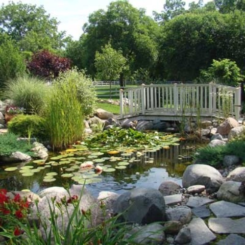 If your pond is large enough don't forget to add a wooden bridge to it. It's perfect way to connect several backyard's zones.