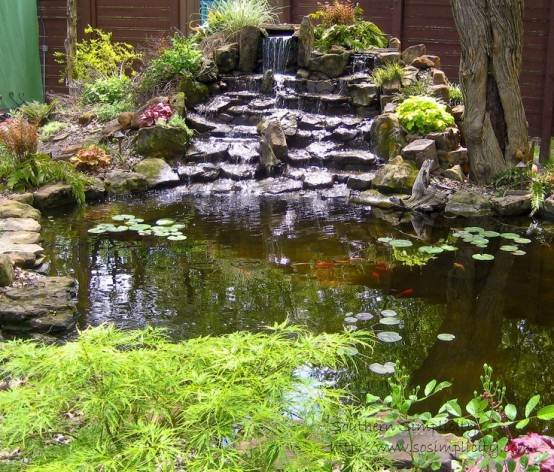 A waterfall made of stone is one of those things that could become a focal point of any pond.