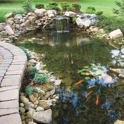 67 cool backyard pond design ideas digsdigs for Garden pond installers