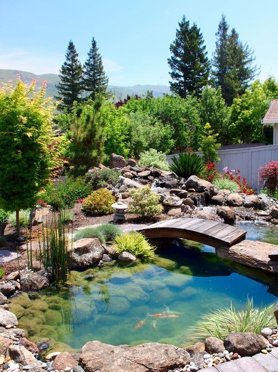 This is how beautiful backyard with a pond could be. Of course, fishes and a wood bridge add some goodness to this beauty.