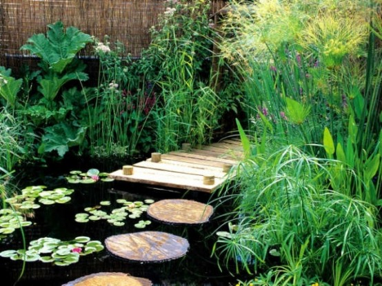 With some planing you can even walk through your pond. Just don't forget to add stepping stones.