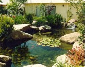 53 Cool Backyard Pond Design Ideas