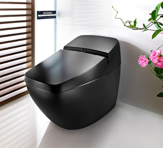 Cool Black Hi Tech Toilet Lumen Avant By Roca DigsDigs