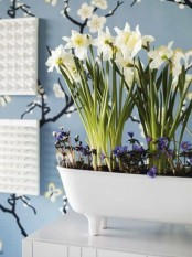 a white bathtub shaped planter with daffodils and some more blooms is a pretty spring decoration to rock
