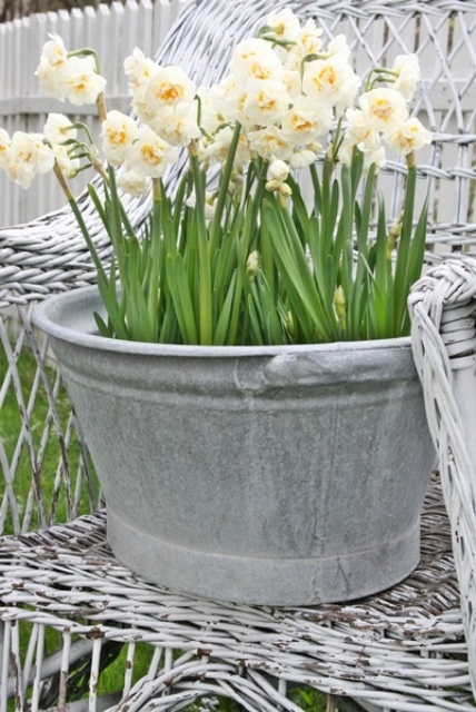 Cool Daffodils Decor Ideas To Welcome Spring