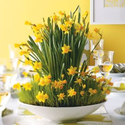 32 Cool Daffodils Dcor Ideas To Welcome Spring DigsDigs