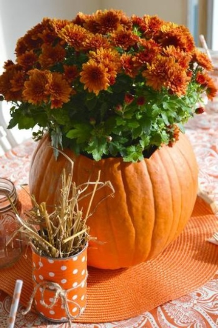 a carved orange pumpkin as a vase and an arrangement of orange blooms is fall classics