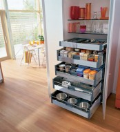 a built-in pantry with glass shelves and several drawers for storage and even pets' bowls down there