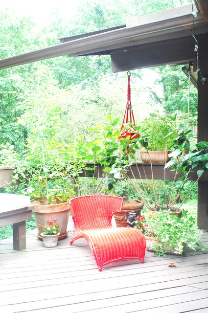 a vintage deck with a red lounger, a wooden chair and some potted greenery and blooms