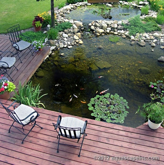 a deck with forged chairs around a large natural-looking pond with fish and pebbles