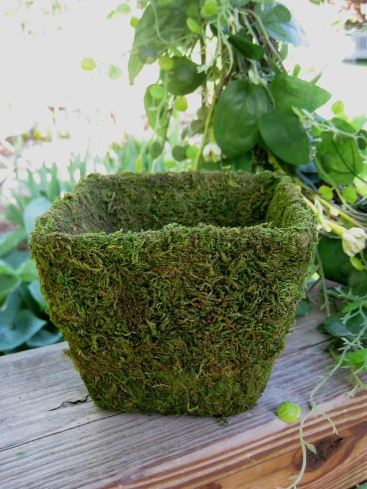 such a moss covered bowl can be used for creating spring centerpieces and arrangements