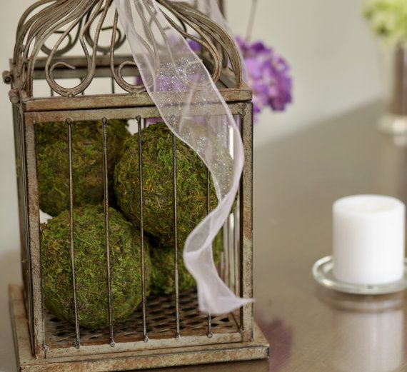 37 Cool Spring Moss Outdoor And Indoor D 233 Cor Ideas Digsdigs