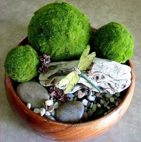 a wooden bowl with pebbles, pinecones, moss bowls and driftwood is a cool spring decoration or centerpiece