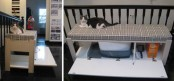 a long bench with a cat litter box inside and means for cleaning the box inside it can be placed in your entryway